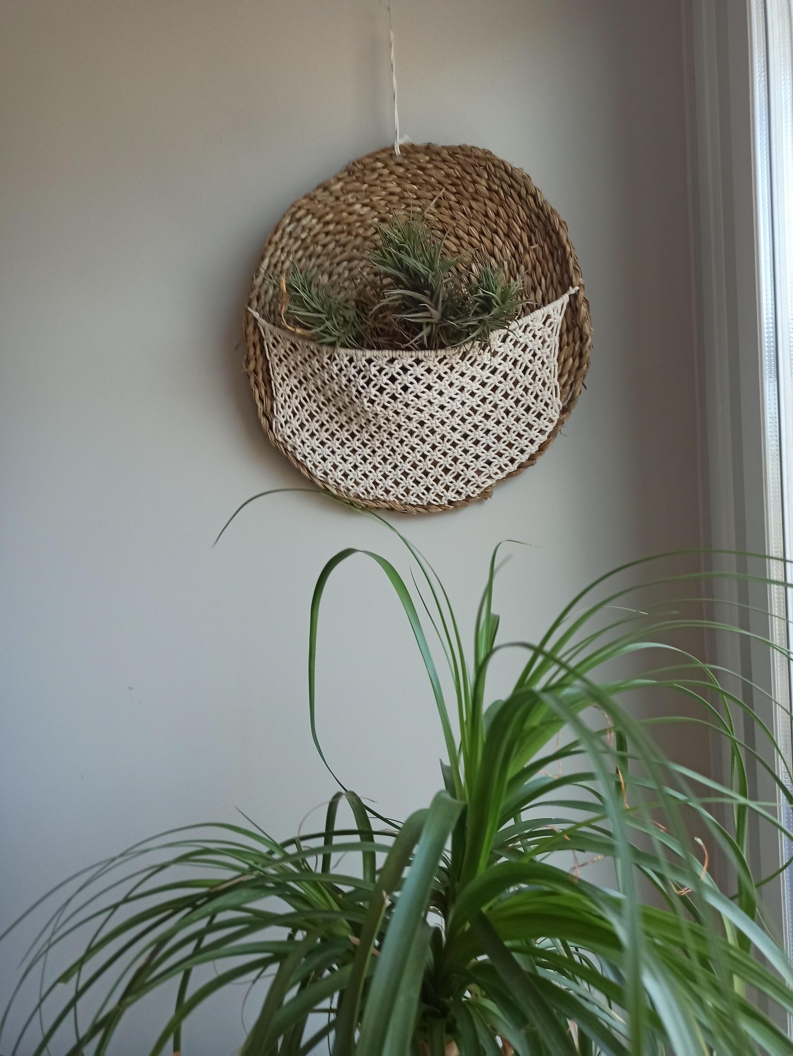 Colgante para plantas SUGEY